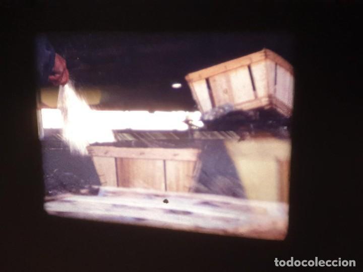 Cine: AMATEUR-VIVEROS DE MARISCO-(1974) 1 X 60 MTS SUPER 8 MM, RETRO VINTAGE FILM - Foto 46 - 234908815