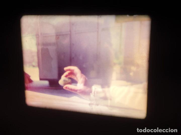 Cine: AMATEUR-VIVEROS DE MARISCO-(1974) 1 X 60 MTS SUPER 8 MM, RETRO VINTAGE FILM - Foto 47 - 234908815