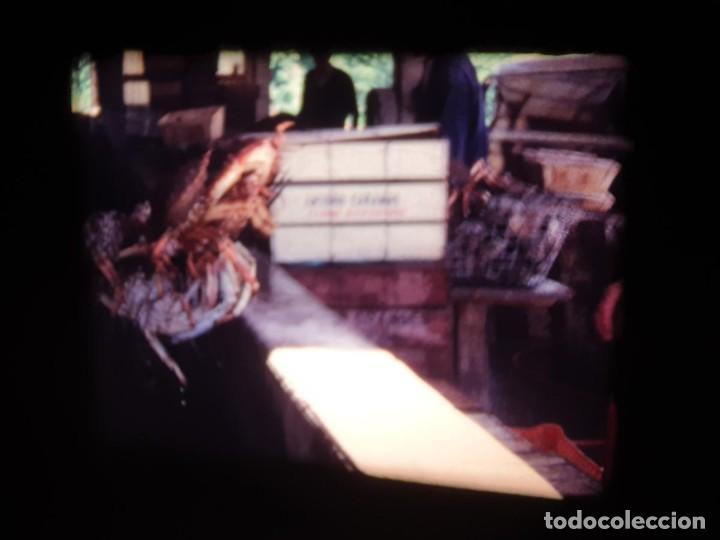 Cine: AMATEUR-VIVEROS DE MARISCO-(1974) 1 X 60 MTS SUPER 8 MM, RETRO VINTAGE FILM - Foto 56 - 234908815
