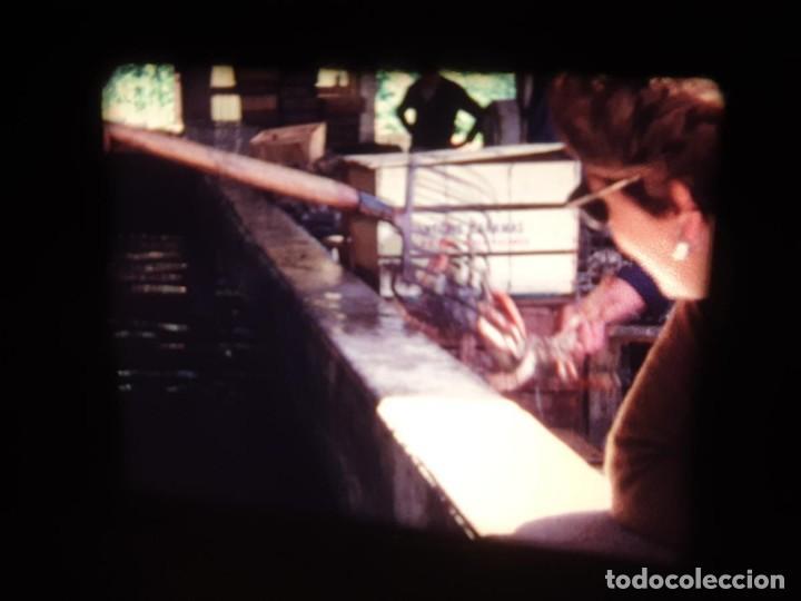 Cine: AMATEUR-VIVEROS DE MARISCO-(1974) 1 X 60 MTS SUPER 8 MM, RETRO VINTAGE FILM - Foto 57 - 234908815