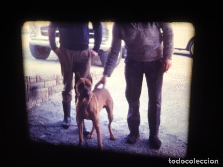 Cine: AMATEUR-VIVEROS DE MARISCO-(1974) 1 X 60 MTS SUPER 8 MM, RETRO VINTAGE FILM - Foto 61 - 234908815