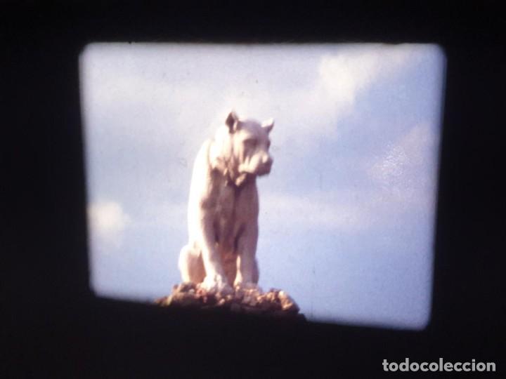 Cine: AMATEUR-VIVEROS DE MARISCO-(1974) 1 X 60 MTS SUPER 8 MM, RETRO VINTAGE FILM - Foto 156 - 234908815