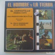Cinéma: PELICULA SUPER 8: EL HOMBRE Y LA TIERRA , EL CERVATILLO 1ª PARTE. FELIX RODRIGUEZ DE LA FUENTE, RTVE. Lote 275961378