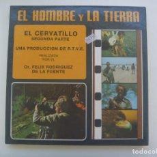 Cinéma: PELICULA SUPER 8: EL HOMBRE Y LA TIERRA , EL CERVATILLO 2ª PARTE. FELIX RODRIGUEZ DE LA FUENTE, RTVE. Lote 275984623
