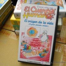 Cine: EL CUERPO HUMANO-DIBUJOS ANIMADOS-VHS-VENTA MINIMA 10 EU--. Lote 26278820