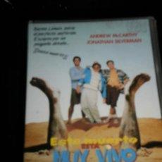 Cine: ESTE MUERTO MUY VIVO - PELICULA VHS - NUEVA SIN USAR - ANDREW MCCARTHY/JONATHAN SILVERMAN - VIDEO. Lote 35424964