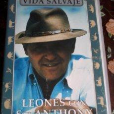 Cinéma: VHS. LEONES CON SIR ANTHONY HOPKINS VIDA SALVAJE. Lote 49146131