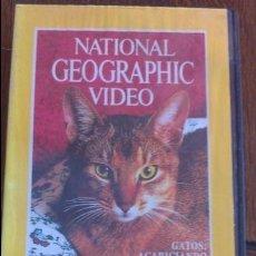 Cine: VHS NATIONAL GEOGRAFIC. Lote 57379160