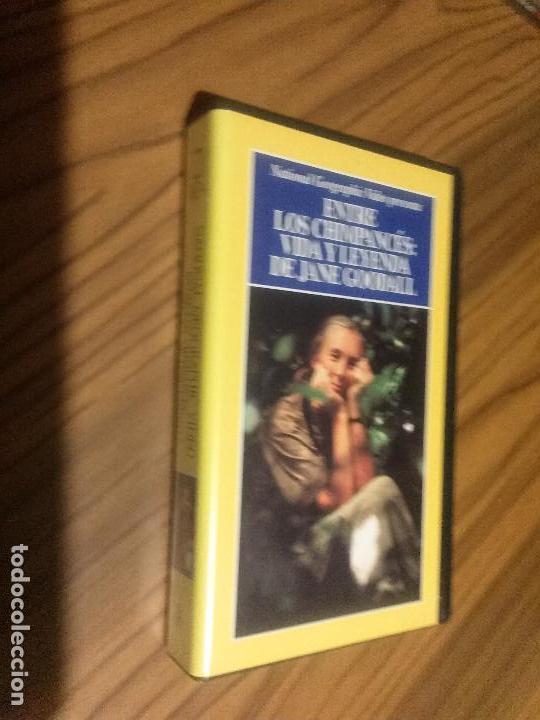 ENTRE LOS CHIMPANCÉS: VIDA Y LEYENDA DE JANE GOODALL. VHS SIN TESTAR. BUEN ESTADO (Cine - Películas - VHS)