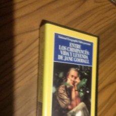 Cine: ENTRE LOS CHIMPANCÉS: VIDA Y LEYENDA DE JANE GOODALL. VHS SIN TESTAR. BUEN ESTADO. Lote 68708489