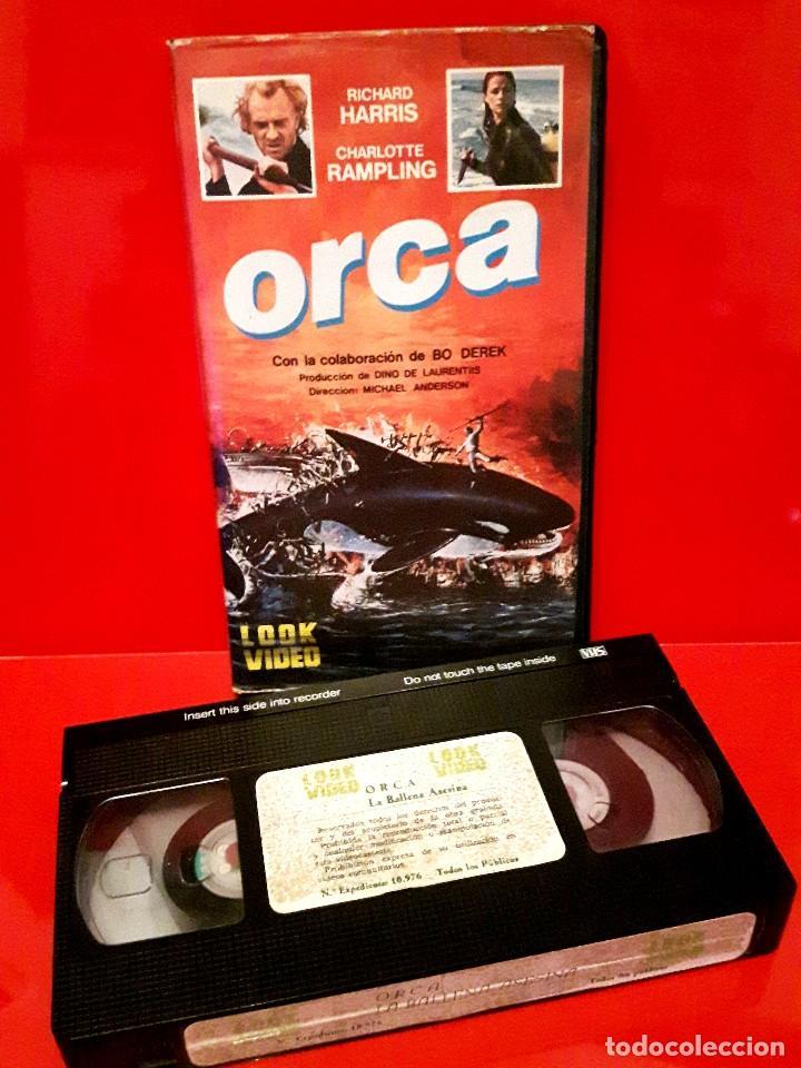 Cine: ORCA, LA BALLENA ASESINA (1977) - Foto 3 - 68905861