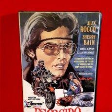 Cine: ESCOGIDO PARA EL INFIERNO - ALEX ROCCO, SHERRY BAIN. RARISIMA NUNCA EN DVD. Lote 79147437