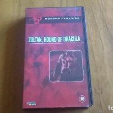 Cine: ZOLTAN HOUND OF DRAULA - VHS. Lote 80007153