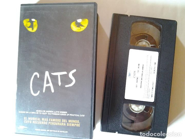 cats  video vhs elaine paige  el musical m u00e1s fa