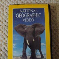 Cine: NATIONAL GEOGRAPHIC VIDEO 23 VHS EL ELEFANTE. Lote 105876263