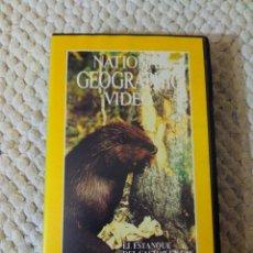 Cine: NATIONAL GEOGRAPHIC VIDEO 26 VHS EL ESTANQUE DEL CASTOR EN LAS MONTAÑAS ROCOSAS. Lote 105877475