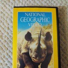 Cine: NATIONAL GEOGRAPHIC VIDEO 29 VHS EL RINOCERONTE. Lote 105879135