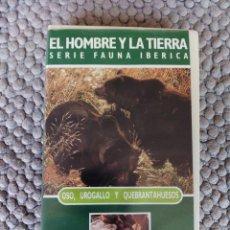 Cine: VIDEO VHS EL HOMBRE Y LA TIERRA SERIE FAUNA IBERICA OSO, UROGALLO Y QUEBRANTAHUESOS. Lote 105881675