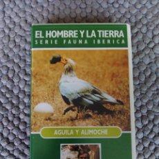Cine: VIDEO VHS EL HOMBRE Y LA TIERRA SERIE FAUNA IBERICA AGUILA Y ALIMOCHE. Lote 105890611