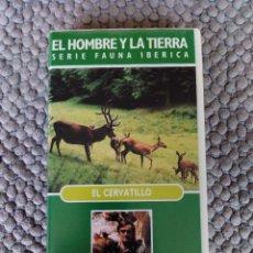Cine: VIDEO VHS EL HOMBRE Y LA TIERRA SERIE FAUNA IBERICA EL CERVATILLO. Lote 105891291