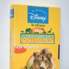 Cine: LOS LEONES: EL MARAVILLOSO MUNDO DE LOS ANIMALES *** VHS INFANTIL DISNEY *** FUNDA CARTÓN. Lote 116085711