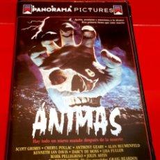 Cine: ANIMAS (1989) - DIR: DAVID ACOMBA - TERROR UNICA EN TC!. Lote 150501430