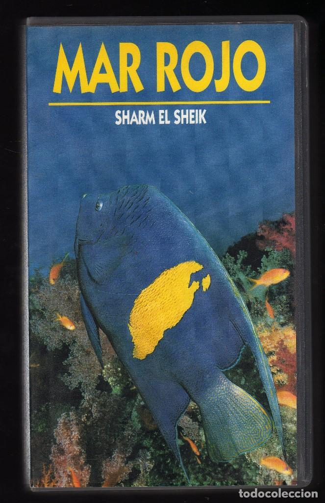 EL MAR, ACUARIO DEL MUNDO (CINTA VHS Nº 3: MAR ROJO, SHARM EL SHEIK) - DURACIÓN: 40 MINUTOS - (Cine - Películas - VHS)