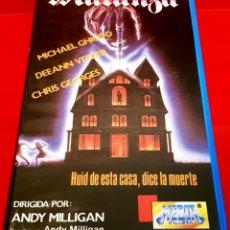 Cine: MATANZA (CARNAGE) - ANDY MILLIGAN - CULTO GORE HORROR. Lote 181634667