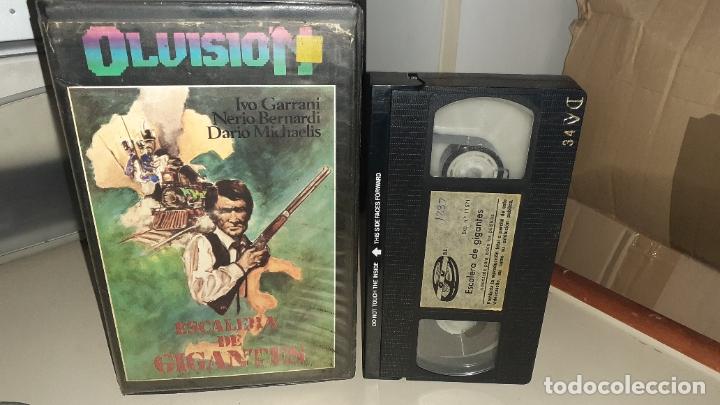 VHS ESCALERA DE GIGANTES - GUIDO MALATESTA (Cine - Películas - VHS)