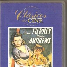 Cine: LAURA - GENE TIERNEY - DANA ANDREWS. VHS. Lote 184599181