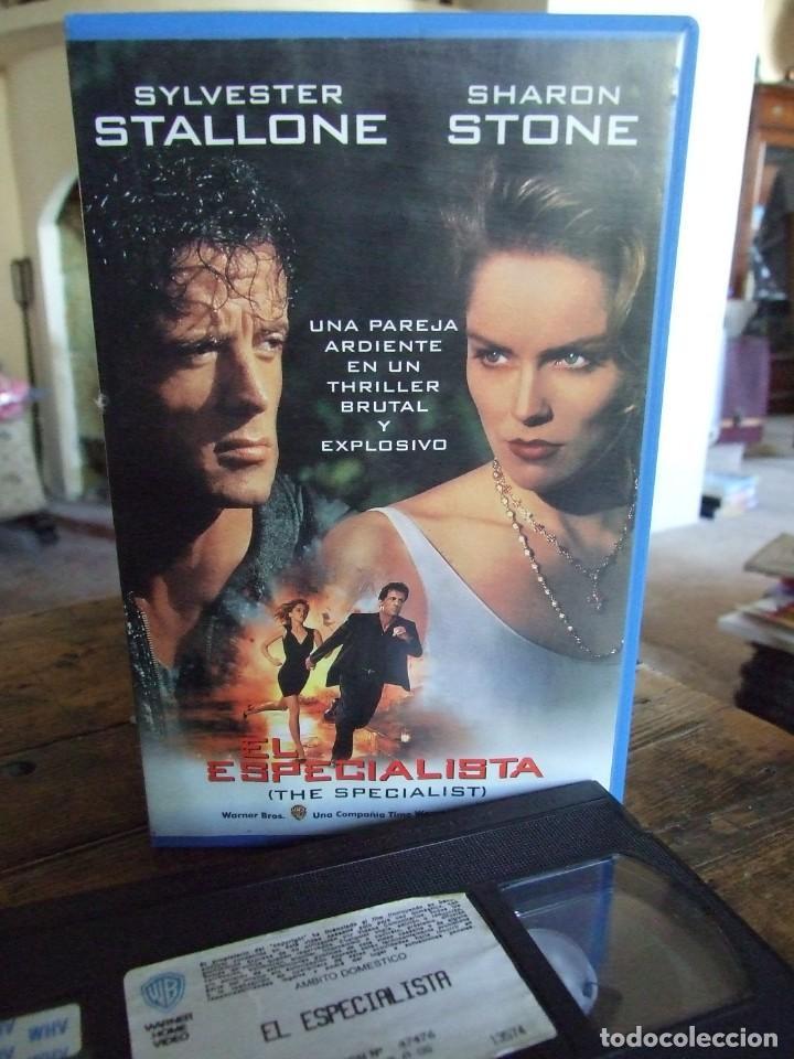 EL ESPECIALISTA - LUIS LLOSA - SYLVESTER STALLONE , SHARON STONE - WARNER 1994 (Cine - Películas - VHS)