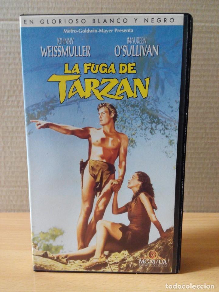 Cine: COLECCION DE 22 VIDEOS VHS DE TARZAN - Foto 24 - 247601055