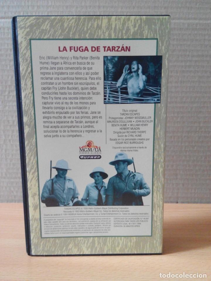Cine: COLECCION DE 22 VIDEOS VHS DE TARZAN - Foto 25 - 247601055