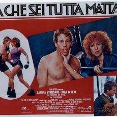 Cine: SH96 COMBATE DE FONDO BARBRA STREISAND SET DE 10 POSTERS ORIGINAL ITALIANO 47X68. Lote 4402986