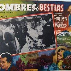 Cine: WILLIAM HOLDEN - HOMBRES O BESTIAS - WESTERN - ELEANOR PARKER - ORIGINAL MEXICANO LOBBY CARD. Lote 13458046