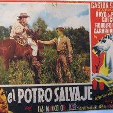 Cine: WESTERN - EL POTRO SALVAJE - GASTON SANTOS - RAFAEL BALEDON - ORIGINAL LOBBY CARD MEXICANO. Lote 13954151