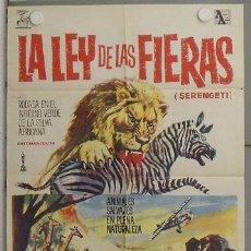 Cine: LO62 LA LEY DE LAS FIERAS DOCUMENTAL AFRICA SALVAJE POSTER ORIGINAL 70X100 ESTRENO. Lote 17746796