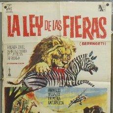 Cine: NZ11 LA LEY DE LAS FIERAS DOCUMENTAL AFRICA SALVAJE POSTER ORIGINAL 70X100 ESTRENO. Lote 26410532
