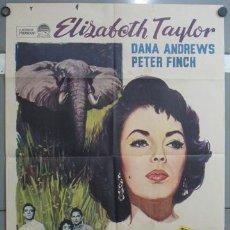 Cine: OA88 LA SENDA DE LOS ELEFANTES ELIZABETH TAYLOR DANA ANDREWS POSTER ORIGINAL 70X100 ESPAÑOL. Lote 26662163