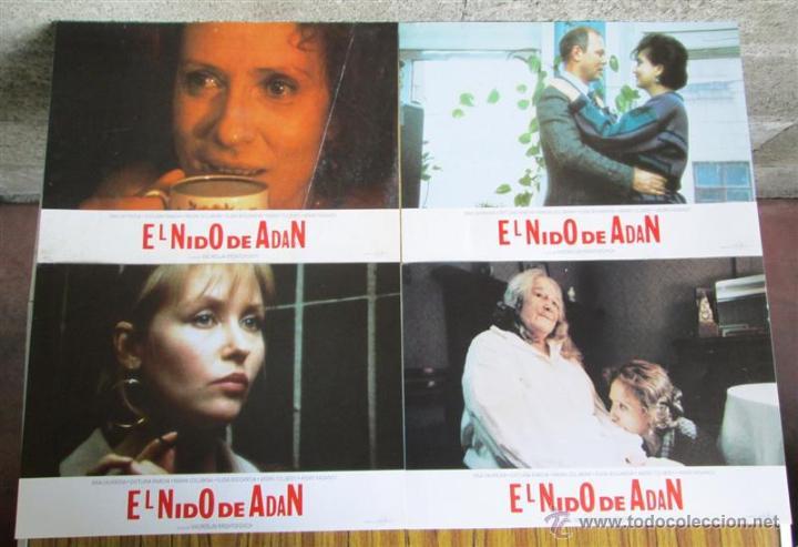 8 FOTO CROMOS + CARTEL --- EL NIDO DE ADAN -- INNA CHURIKOV, SVETLANA RIBOVA (Cine - Posters y Carteles - Comedia)