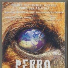 Cine: ESTE PERRO MUNDO DVD: ROMPEDOR, ESCANDALIZADOR, UNICO, ASOMBROSO... Y DRAMÁTICO.PRECINTADO. Lote 46959266