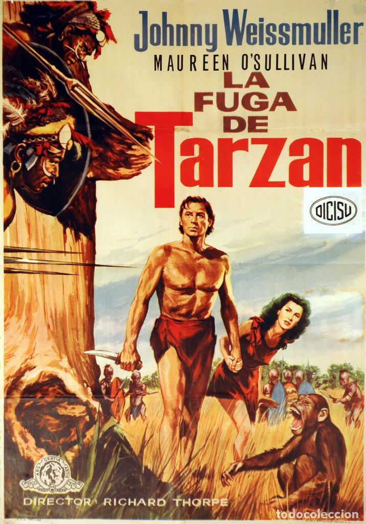 LA FUGA DE TARZÁN. JOHNNY WEISSMULLER. CARTEL ORIGINAL 1979. 100X70 (Cine - Posters y Carteles - Aventura)