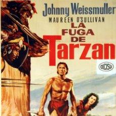 Cine: LA FUGA DE TARZÁN. JOHNNY WEISSMULLER. CARTEL ORIGINAL 1979. 100X70. Lote 72318823