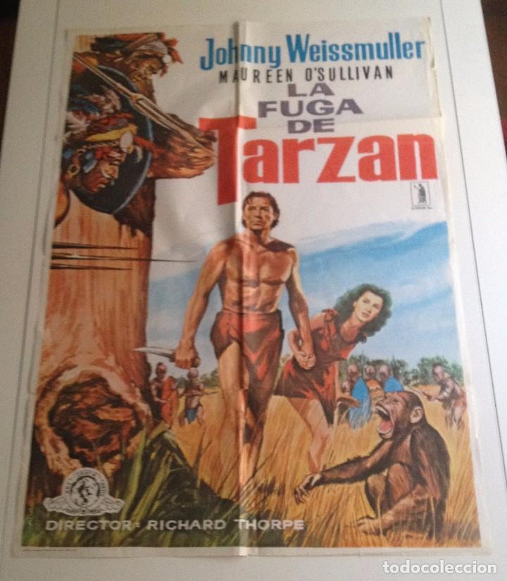 LA FUGA DE TARZAN (1979) (Cine - Posters y Carteles - Aventura)