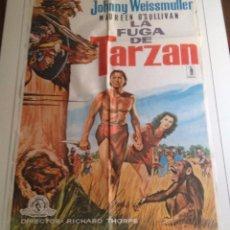 Cine: LA FUGA DE TARZAN (1979). Lote 79919085