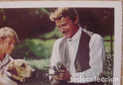 Cine: Disney, Rascal, Lobby Card, 1969, Walt Disney Productions, Technicolor - Foto 6 - 88816796