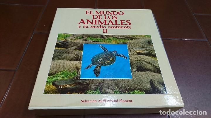 LÁSER DISC, EL MUNDO DE LOS ANIMALES, NATIONAL GEOGRAPHIC (Cine - Posters y Carteles - Documentales)