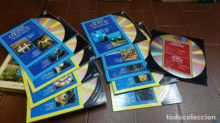 Cine: LÁSER DISC, EL MUNDO DE LOS ANIMALES, NATIONAL GEOGRAPHIC - Foto 2 - 99080423