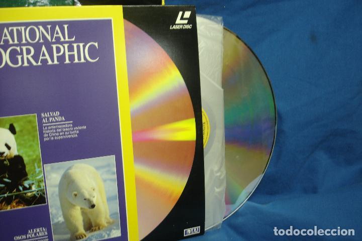 Cine: -EL MUNDO DE LOS ANIMALES - 2 ESTUCHES CON 20 DISCOS DE DOCUMENTALES EN FORMATO LASER DISC - Foto 2 - 111872399