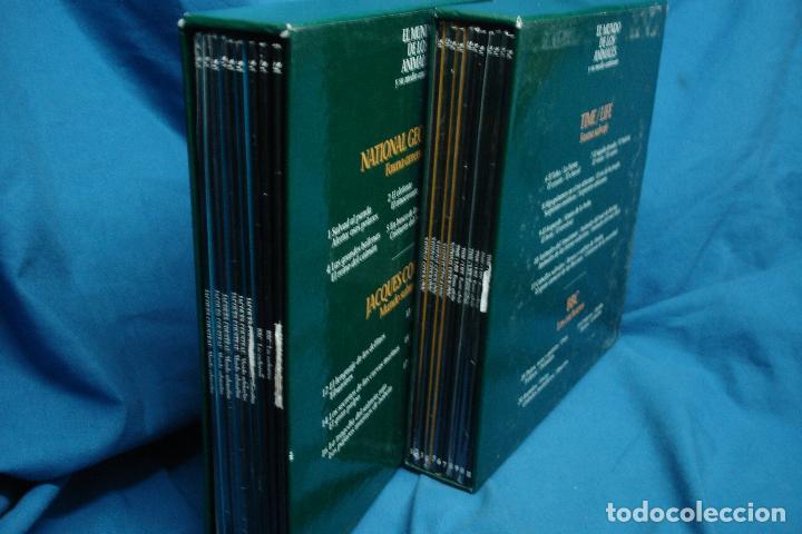 Cine: -EL MUNDO DE LOS ANIMALES - 2 ESTUCHES CON 20 DISCOS DE DOCUMENTALES EN FORMATO LASER DISC - Foto 3 - 111872399